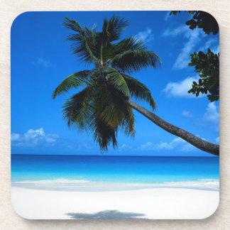 Palm Tree Beverage Coaster