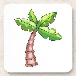 Palm Tree Coaster