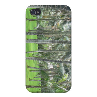 Palm Tree Forest iPhone Case Covers For iPhone 4