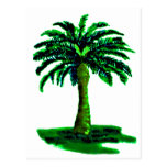 Palm Tree Green The MUSEUM Zazzle Gifts Postcard