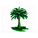 Palm Tree Green The MUSEUM Zazzle Gifts Postcards