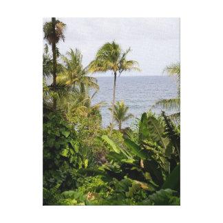 Palm Tree In Hawaii Botanical Gardens Canvas Print