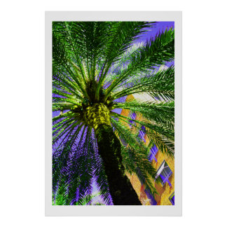 Palm tree in the evening poster