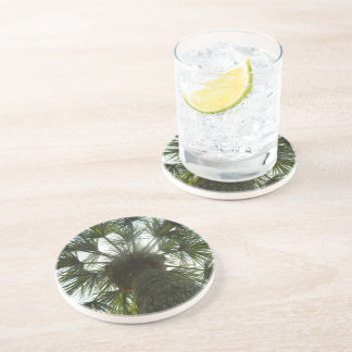 Palm Tree in The Sky Beverage Coasters