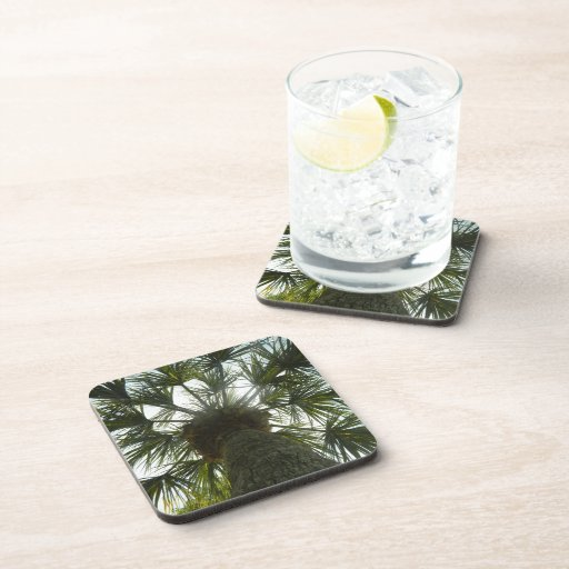 Palm Tree in The Sky Beverage Coaster