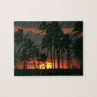 Palm Tree Jigsaw Puzzle