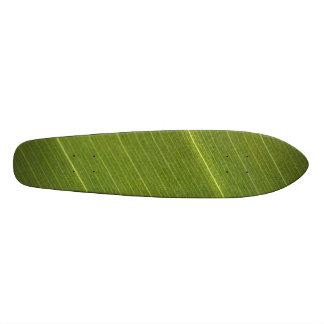 Palm Tree Leaf Skate Decks