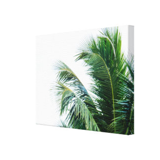 Palm Tree Leaves Canvas Print