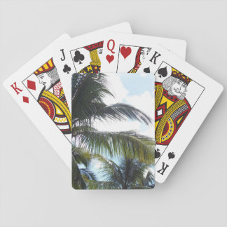 Palm Tree Leaves in SKy Playing Cards