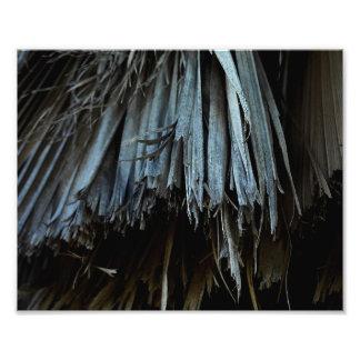Palm Tree Leaves Photo Print