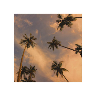 Palm tree leaves tropical nature photo wood wall decor