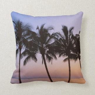 Palm tree, morning cushion
