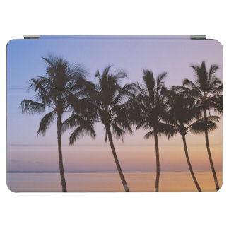 Palm tree, morning iPad air cover