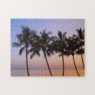 Palm tree, morning jigsaw puzzle