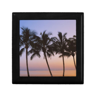Palm tree, morning small square gift box