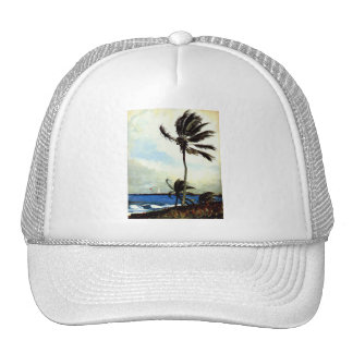 'Palm Tree-Nassau' Cap