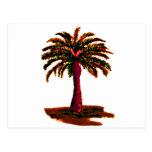 Palm Tree Orange The MUSEUM Zazzle Gifts Postcard