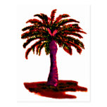 Palm Tree Red The MUSEUM Zazzle Gifts Postcard