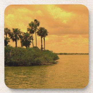 Palm Tree Reverie Coaster