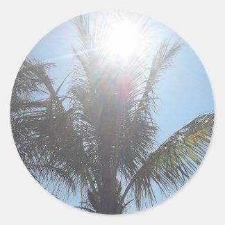Palm Tree Summer Day Classic Round Sticker
