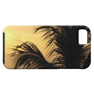 Palm Tree Sunset iPhone 5 Case