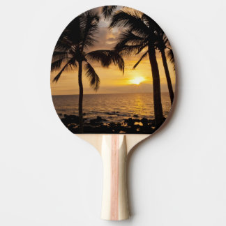Palm tree sunset ping pong paddle