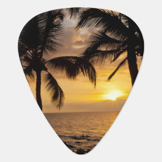 Palm tree sunset plectrum