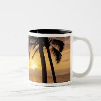 Palm tree sunset Two-Tone coffee mug