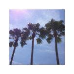palm tree trio stretched canvas prints