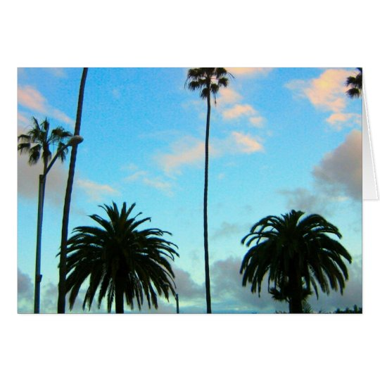 Palm Trees and Blue Sky Greeting Card