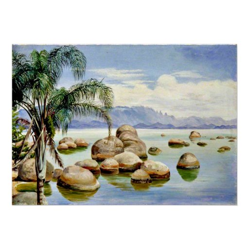 Palm Trees and Boulders in the Bay of