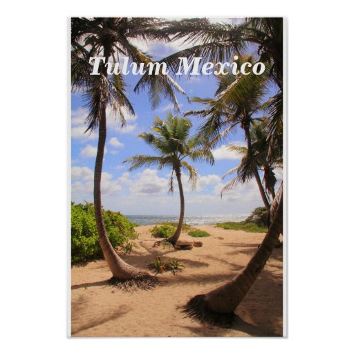 Palm trees and Caribbean Sea Tulum Mexico Poster