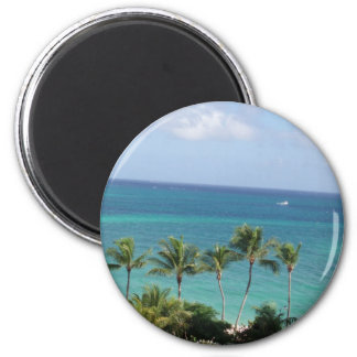 Palm trees and Ocean magnet