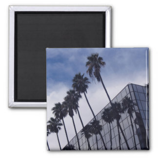 Palm Trees and Office Building Square Magnet