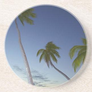 Palm trees and sunset, Plantation Island Resort Coaster