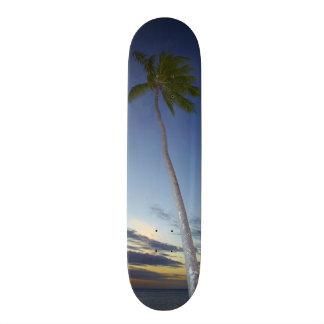 Palm trees and sunset, Plantation Island Resort Skateboard Decks