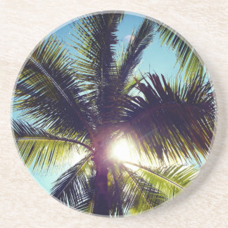 Palm Trees and The Sun Coaster