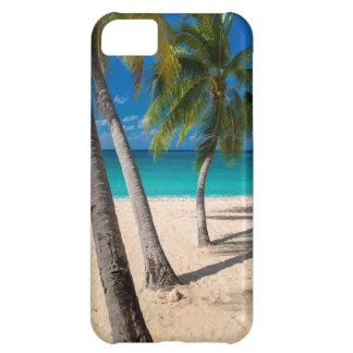 Palm trees and turquoise water along Seven-Mile iPhone 5C Case