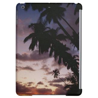 Palm Trees at sea