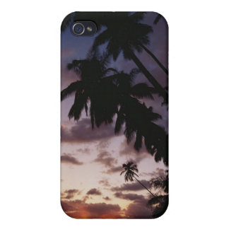 Palm Trees at sea Covers For iPhone 4