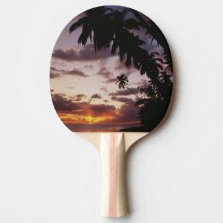Palm Trees at sea Ping Pong Paddle