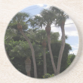 Palm Trees Beverage Coaster