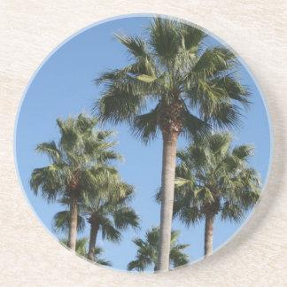 Palm Trees Coaster