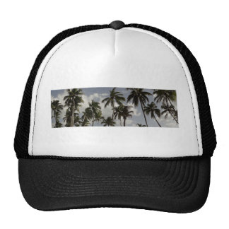 Palm Trees Dominican Mesh Hat