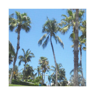 Palm Trees Gallery Wrapped Canvas