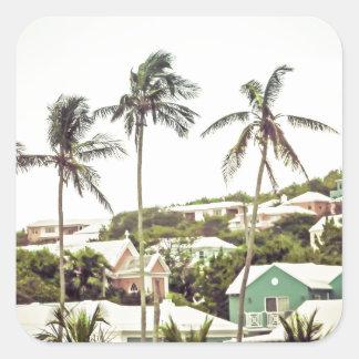 Palm Trees in Bermuda Square Sticker