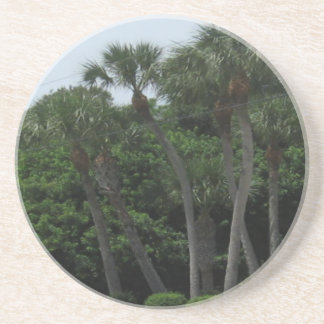 Palm Trees In The City Coaster