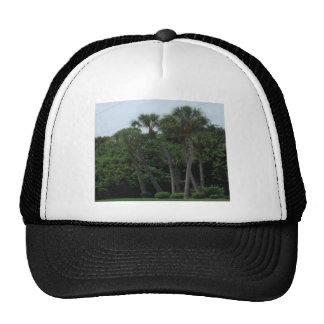 Palm Trees In The City Mesh Hat