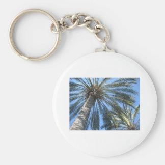 palm trees key ring