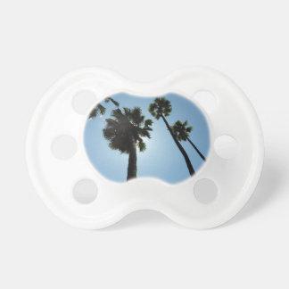 Palm Trees Los Angeles Hollywood Usa Dummy